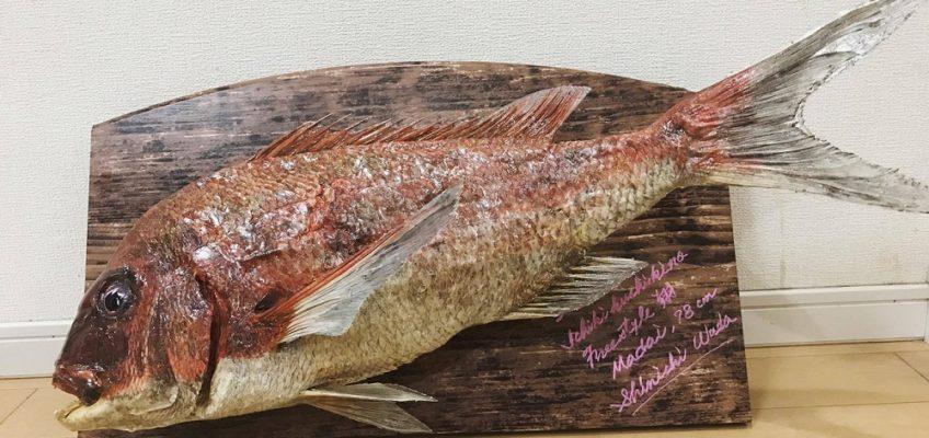 真鯛魂!真鯛の剥製レシピ